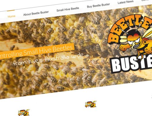 Beetle Buster Website