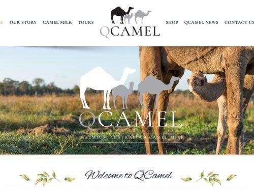 QCamel